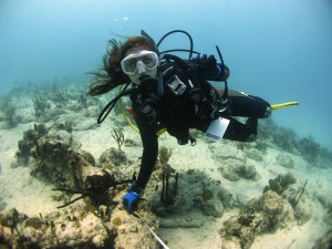 Classmate Grace Blackwell measuring the distance between the GUAP's anchor and a colony of pillar coral.