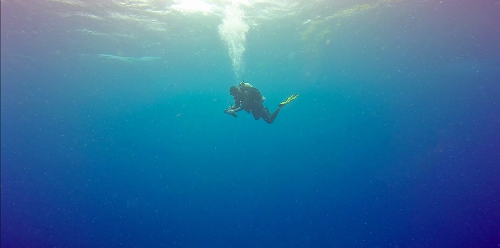 Even though the receiver recovery dives had to be quick, the depths we went to still warranted a safety stop. Here Chris Biggs, a graduate student from UVI hangs mid-water, cleaning a receiver. The calm beneath the surface belies the stormy conditions above.