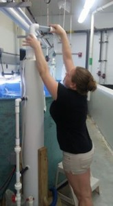 Cleaning the protein skimmers at the MarEx Aquarium