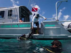 Jeff, our boat operator, grabs our gear and helps Liz, Robby, and I get out of the water after a dive.