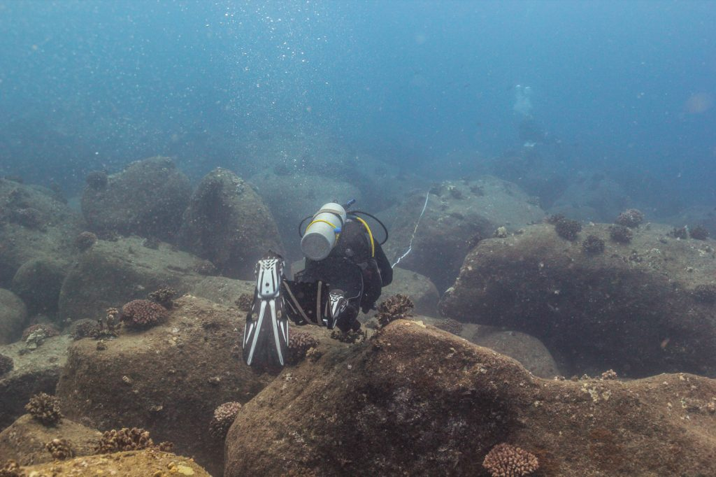 Randall swims the transect tape taking photographs of the substrate. Eric can be seen in the distance doing his fish count.